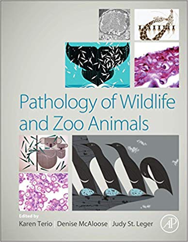 Pathology of Wildlife and Zoo Animals 1st Edition