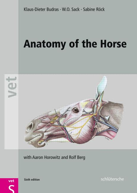 Anatomy of the Horse, 6th Edition