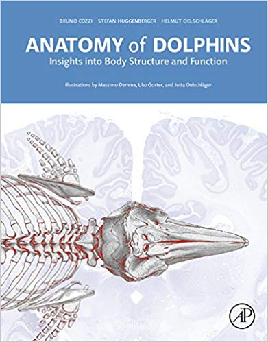Anatomy of Dolphins, 1st Edition Insights into Body Structure and Function